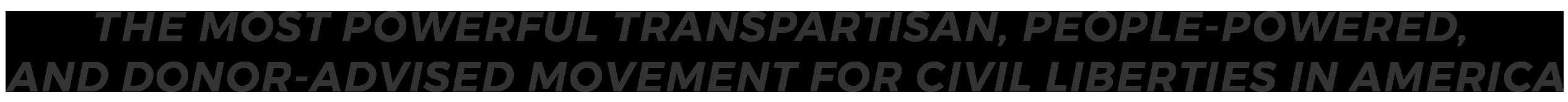 American Civil Liberties Organization - Non Profit Civil Liberties Group